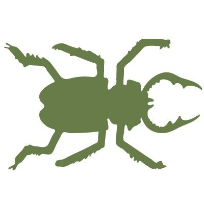 Beetle Stencil For The Walls Of A Nature Center Or Classroom front-994040