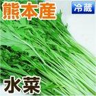 あいあい 熊本県産 水菜 150g以上 【九州 野菜】