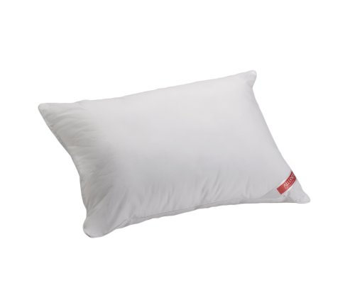 Buy Discount Aller-Ease Hot Water Washable Allergy Pillow, Queen, Medium