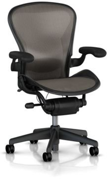 Aeron Chair by Herman Miller - Home Office Desk Task Chair Fully Loaded Highly Adjustable Medium Size (B) - Lumbar Back Support Cushion Graphite Frame Classic Lead Pellicle