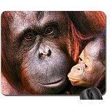 Orangutans Mouse Pad, Mousepad (Primates Mouse Pad)
