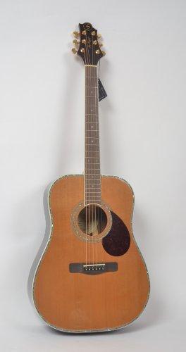 Greg Bennett グレッグベネット アコースティックギター D-8
