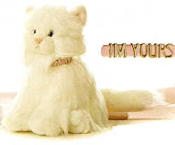 """Candy White Persian Cat 10"""" by Aurora"""
