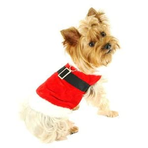 Doggy Father Christmas Fancy Dress Jacket