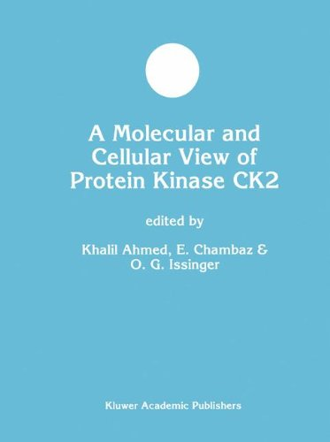 A Molecular And Cellular View Of Protein Kinase Ck2 (Developments In Molecular And Cellular Biochemistry)