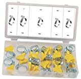PIKE PRO.TOOL XDV1883PPT HOSE CLAMP ASSORTMENT, 26PC (Pack of 2) - Min 3yr Cleva Warranty