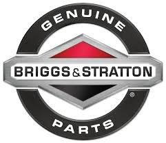 Briggs & Stratton 5420K 2-Pack Spark Plug by Magneto Power