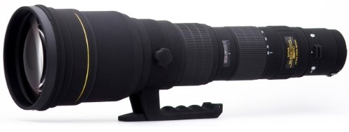 Sigma 300-800mm f/5.6 EX DG HSM APO IF Ultra Telephoto Zoom Lens for Nikon SLR Cameras