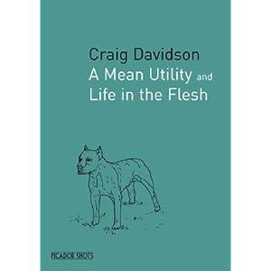 PICADOR SHOTS - A Mean Utility (Picador Shots) Craig Davidson