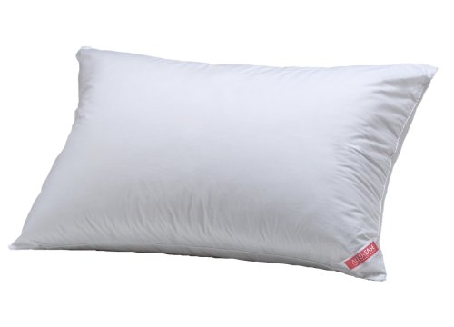 Aller-Ease Hot Water Washable Allergy Pillow, Standard, Extra Firm (Aller Ease Hot Water Pillow compare prices)