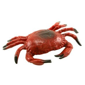 Hard Plastic Crab