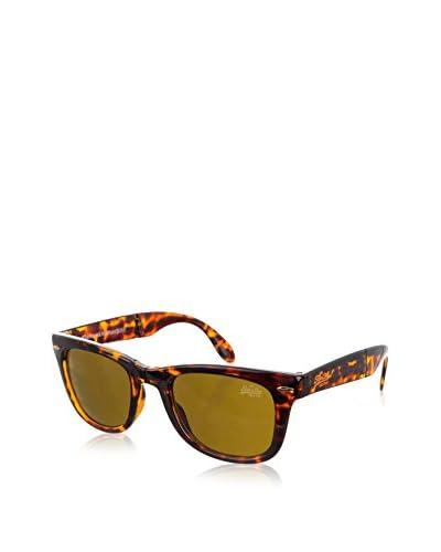 Superdry Gafas de Sol (70 mm) Havana