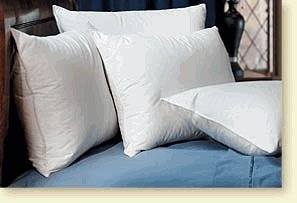 Pacific Coast ® Touch of Down ® Standard Pillow Set (4 Standard Pillows) - Featured in Many Hilton ® Hotels