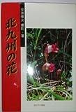 北九州の花