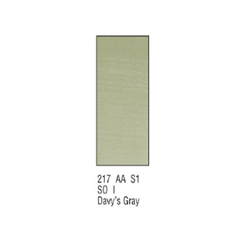 Winsor newton & artists-aquarelle - 5 ml-davy's (gris)