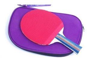 DHS X2003 (Shakehand /Long Handle) Table Tennis Paddle Racket Bat Ping-Pong 2003