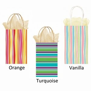 Party Bag - Turquoise Striped (1)