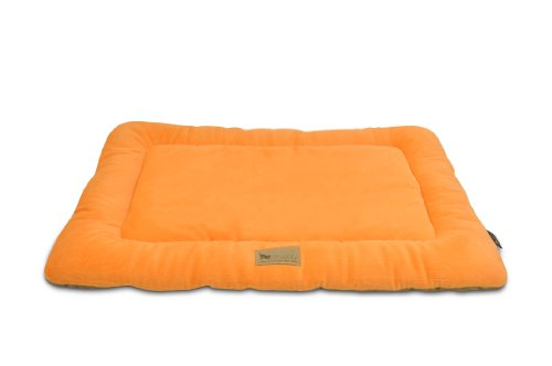 Plastic Dog Beds For Large Dogs 5041 front