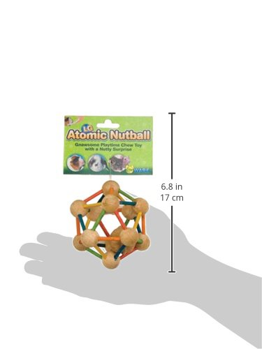 Ware Wood Atomic Nut Ball Small Pet Toy, Large