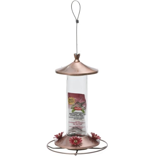 Perky-Pet Elegant Copper Glass Hummingbird Feeder with Free Nectar