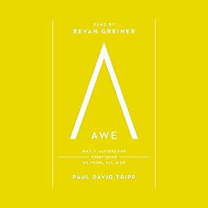 Awe Audiobook