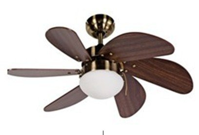 """30"""" Dc Brushless Ceiling Fan With 6 Blades And Single Light Kit"""