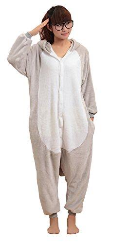 Baby Koala Images front-1039975