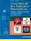 img - for Anatomia De Los Animales Domesticos/ Anatomy of the Domestic Animals: Texto Y Atlas En Color (Spanish Edition) book / textbook / text book