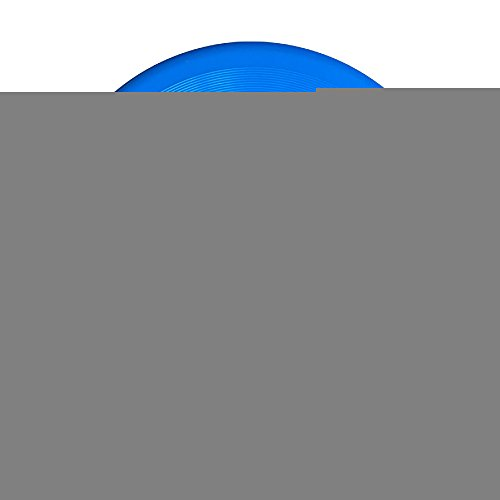 Discovery Wild TRAINING TO BEAT GOKU OR AT LEAST KRILLIN GYM Plastic Sportdisc Flying Disc - Frisbee Like Toy For Outdoor Game Play - Sports For All Ages - Party Fun - RoyalBlue