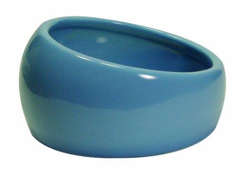 Living World Ergonomic Dish, Blue, Small (Rabbit Food Dish compare prices)