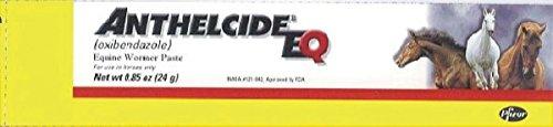 pfizer-equine-450006-anthelcide-eq-equine-wormer-paste-085-oz
