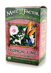 Organic Yerba Mate Tropical Lime 20 Bag(S)