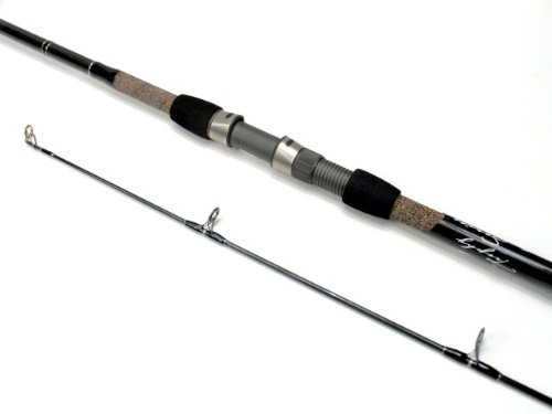 Review best fishing rods best buy fishing rods tsunami for Best surf fishing rods