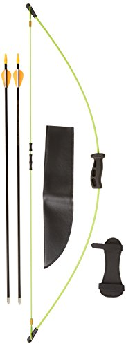 Bear Archery 1st Shot Bow Set, Flo Green (Bear Youth Bow compare prices)