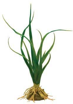 Tetra USA Inc Ww 14″ Silk Octopus Plant