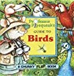 Professor Pipsqueak's Guide to Birds (Chunky Flap Books)