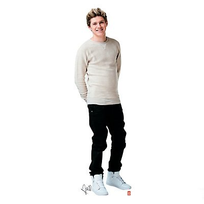 One Direction Stand-Up - Niall Horan (One Direction Stand Up Cardboard compare prices)