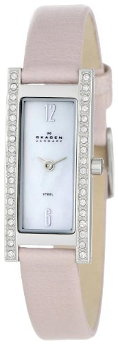 Skagen Steel Leather Womens Watch