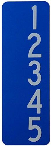 Silver Lining Custom 911 Blue Reflective Address Sign Vertical Plate 3