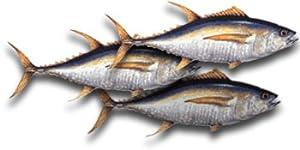 Yellowfin Tuna Steaks, 1 Pound