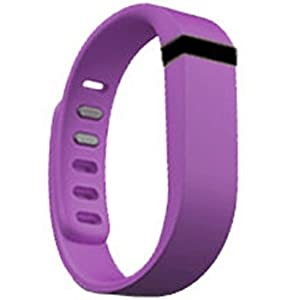 Replacement Wrist Band for Fitbit Flex (Light Purple, Small)