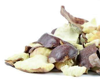 bulk-herbs-horse-chestnuts-organic