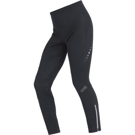 Gore Running Wear Gore Running Wear Men's Pulse 2.0 SO Tights (Black, X-Large)