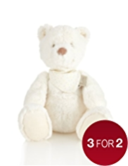 Bear Soft Toy