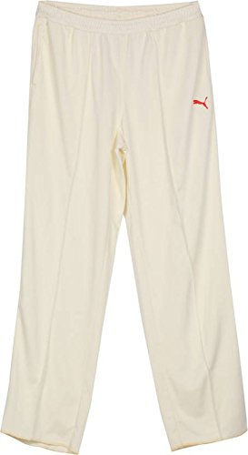Puma Team Knit Cricket Track Pant - Large  available at amazon for Rs.780