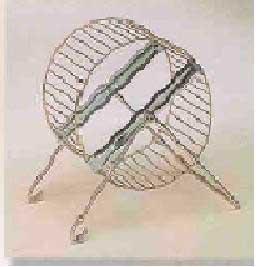 Deluxe Hamster Wheel