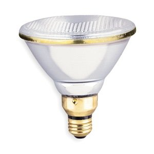 incandescent spotlight par38 150w halogen bulbs. Black Bedroom Furniture Sets. Home Design Ideas