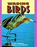 Wading Birds (Pull Ahead Books) (0822536145) by Anne Welsbacher