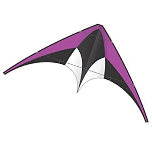 DC Nylon Sport Kite - Purple