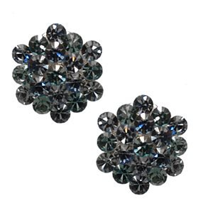 Donna Marie Silver Blue Turquoise Crystal Clip On Earrings
